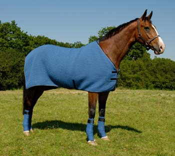 T2000 Wicking Horse Rug