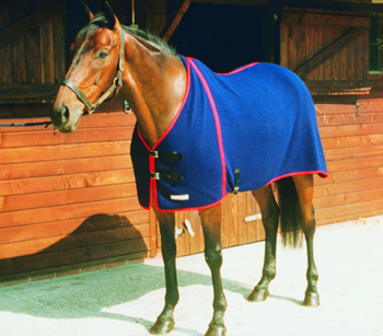 Multi Purpose Summer Weight Wicking Horse Rug